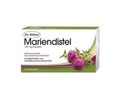MarienDistel_WEB